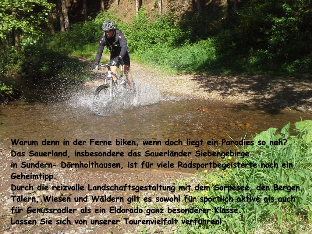 Single trail sauerland